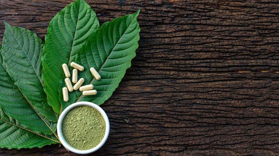 Kratom: What are the Likely Risks and Benefits?